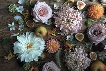#BeautyInBloom / Feel Unique's Pinterest Bloom Board Competition