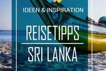 ✈Sri Lanka Reisetipps / Sri Lanka gehört zu meinem ersten Reiseziel im Asiatischen Raum. Und die Insel im Indischen Ozean hat es mir sofort angetan - leckeres Streetfood, nette Menschen und coole Orte. Denn trotz des vergleichweise kleinen Raums, gibt es auf Sri Lanka so viele verschiedene Plätze, vor allem wunderschöne Strände, zu entdecken! Auf diesem Board teile ich alle meine Inspirationen und Tipps mit dir. || Mehr Lesen: www.back-packer.org/de/individuelle-rundreise-sri-lanka
