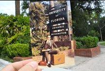 University of Florida Campus! / by UF International Center