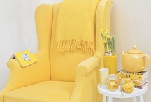 Canary Yellow / by Talia Adomo