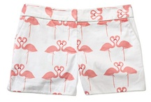 Flamingos anyone? / by Talia Adomo