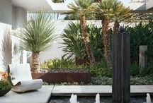 Floridana / all things Florida. landscapes, garden design and research / by Falon Land Studio