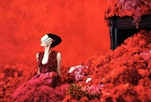 Erik Madigan Heck Special / Full Article: http://www.gf-luxury.com/erik-madigan-heck-modehaus-neimann-marcus.html