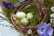White Pastel Easter