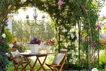 Glamorous Gardening / Garden