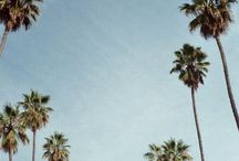 Travel ❤️✈️ / Los Angeles