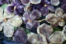 Violet Purple Inspiration