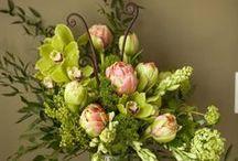 Flowers: Floral Arrangements