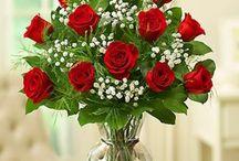 Flower arrengements / Arranjos, vasos, decoração com flores.