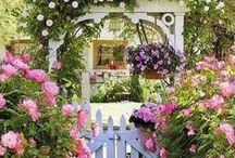 Garden / great ideas for a beautiful garden or terrace
