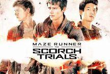 The scorch trials / My favourite movie!