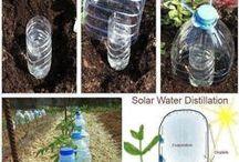 DIY Gardening / About do it yourself gardening