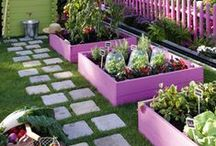Jardins verts, Green Gardens / Jardinages et autres cures de chlorophylle...