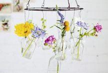 Flores y Plantas para el Hogar
