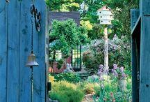 Trädgård! Garden!