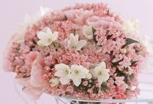 Lovely Wedding Bouquets / Bouquets
