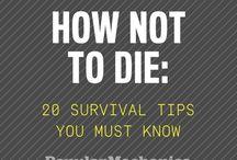 Survival / Guide & Preparation