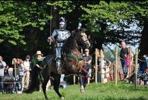 Jousting Horses / You couldn't have jousting without horses. (Well, not traditional jousting).  So here are pictures which feature the horses of the contemporary competitive jousting world.
