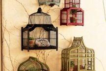 Bird cage / Bird cage