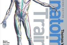 Fascia / Anatomy trains, faszien, fascia, tom myers,