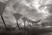 B&W Photography / Black and White Photography by Harry Wedzinga