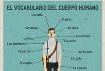 Léxico / Lexique / Actividades para trabajar el vocabulario español