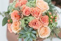 Wedding Ideas: / by Kendra Arnold
