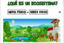 5º Primaria Naturales / Recursos didácticos digitales, y otros, para el aprendizaje en el área de Ciencias de la Naturaleza de 5º Nivel de Educación Primaria.