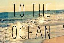 """La Mar """"Salá"""" / Agua eres y en agua te convertirás"""