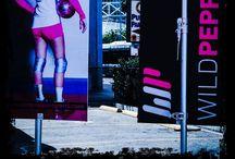 SCVA Jr. National Qualifiers 2014 / Volleyball