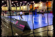 Volleyball Festival Phoenix June 2014
