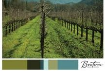 Colors of Bonterra / nature knows best. colors from the farm.
