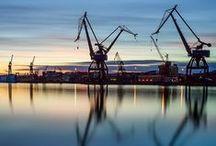 The City of Lions & Cranes