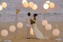 wedding / by Brose Nose