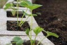 Harkot puutarhassa / Blocks in garden