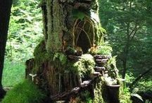 Fairy Houses and accessories / by Terri Butler