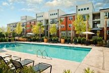 CanalSide Lofts Amenities / CanalSide Lofts offers the best apartment living in downtown Columbia. Enjoy spacious and open floor plans, a brand new fitness center, a luxury outdoor swimming pool, and so much more!