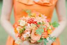 Tangerine Dream Wedding! / by Frances O'Donnell