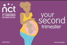 Second trimester / In the second trimester, your pregnancy might start to feel more 'real' as your bump becomes more visible and your baby grows at a faster pace. NCT provides support and information throughout your second trimester.