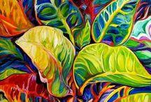 ACQUARELLI E OLII / dipinti olio acquarelli