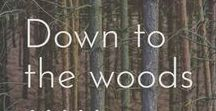 Down to the woods... / Woodland