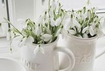 Spring Clean / Great ways to freshen up your home