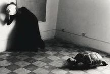 Francesca Woodman / Francesca Woodman (1958-1981) was an Am. photographer best known for her b&w photos featuring either herself or female models. Many of her photographs show young women who are nude, blurred (due to movement and long exposure times), merging with their surroundings, or whose faces are obscured. Woodman was born to artist parents. She attended RISD in Providence, RI. Her work continues to be the subject of much critical acclaim and attention, years after she committed suicide at the age of 22.