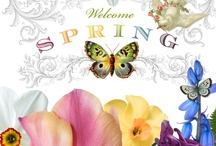 Easter & Spring  / by Marie Muckey