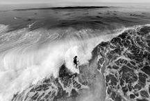. SURF .
