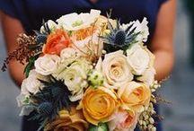 Fall Wedding / Blue, burnt orange, mustard yellow, light pink / by Sarah Greenwell