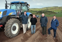 Our farm / We grow many of our crisping potatoes here at Moncur Farm in Perthshire.