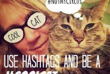 Get Social With Social Media / SocialMedia tips for Facebook, Pinterest, Google+, Blogging, and more
