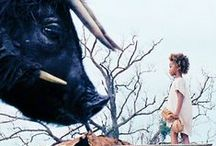 Where The Wild Beast Things of The Southern Wild Are.