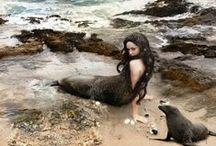Nautica / Mermaids & Selkies, Scuba Divers & Sea Monsters / by Kaitlin Martin